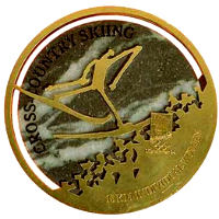 Winter Olympics 1994 Medal Reverse Side